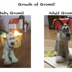 Growth of Gromit